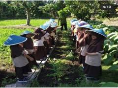 Wisata Edukai ke Kebun Kangkung
